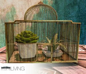 The Dubonnet Birdcage